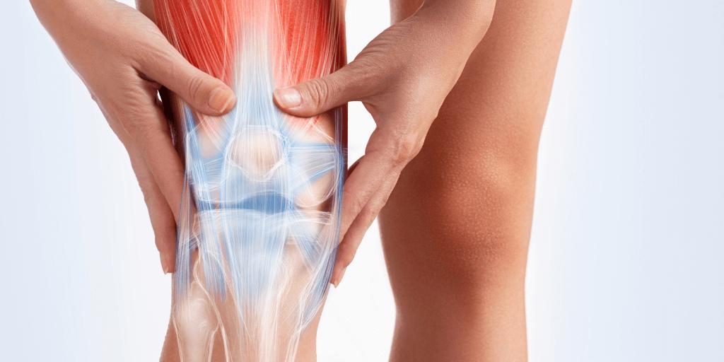 Rendering of knee